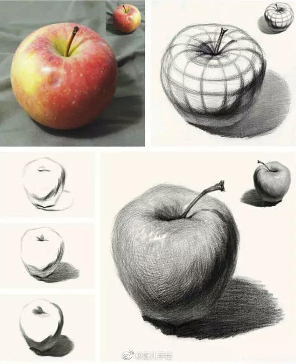 素描大苹果的结构分析,作画步骤,临摹素材全的很.(收集于网络