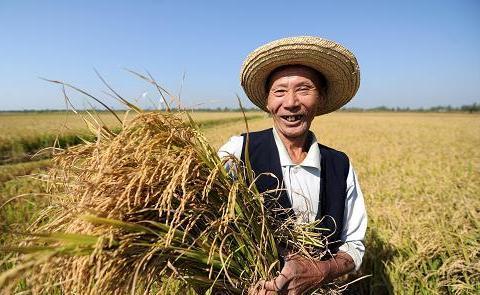 《我爸是农民!》(现代诗)