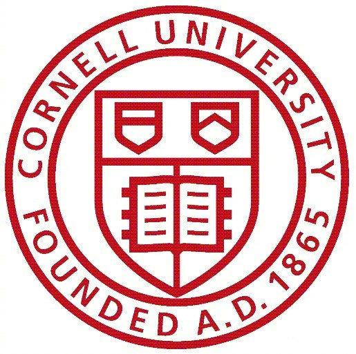 康奈尔大学做笔记的方法,助你提高学习工作效率