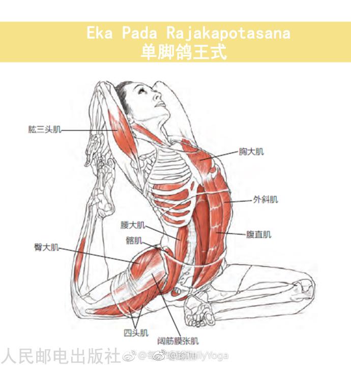 8个瑜伽跪姿动作,坚持下来能缓解膝盖、腰部和体寒问题!