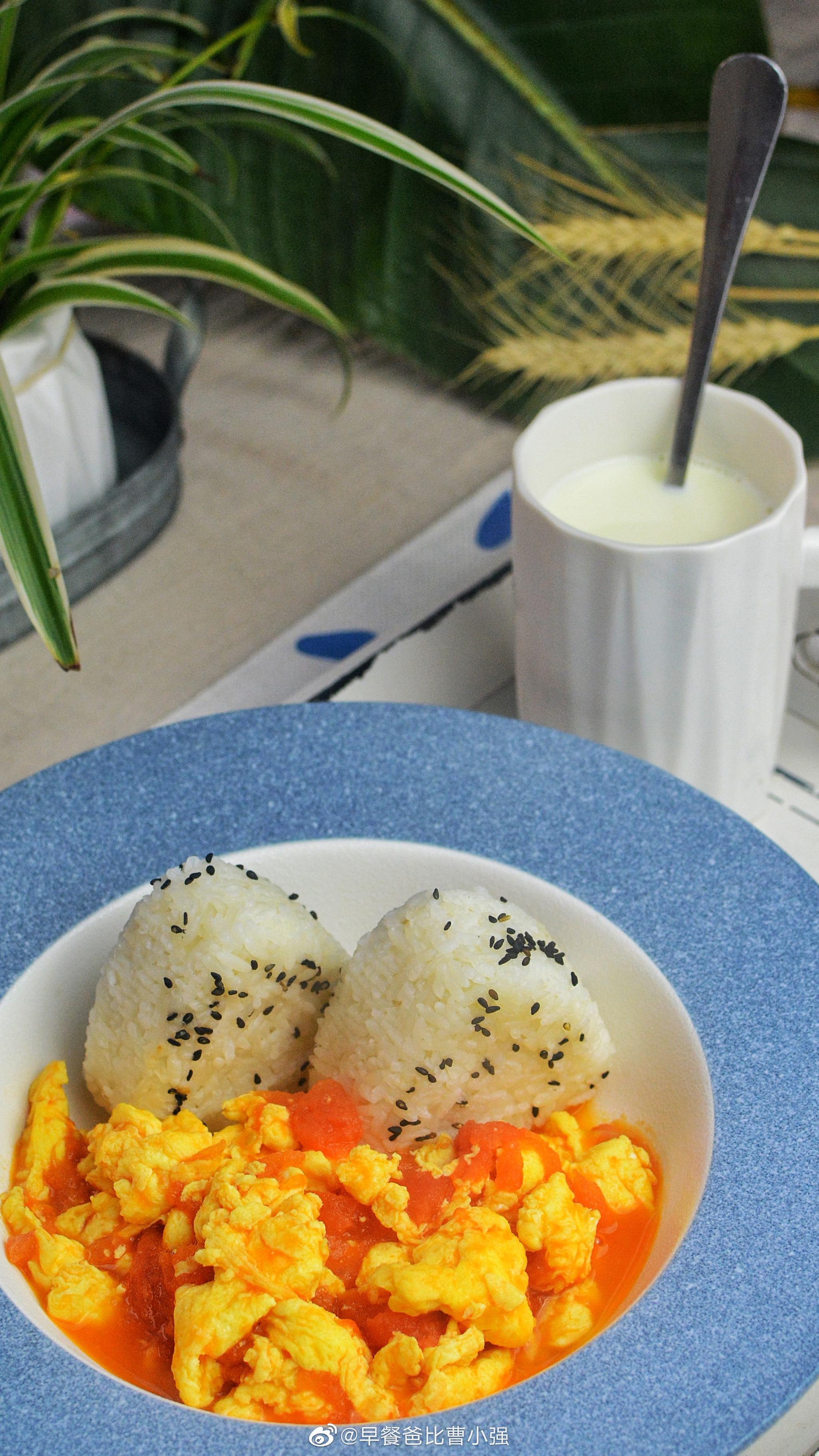 今天早餐番茄鸡蛋盖浇饭牛奶一杯大家早安复古风鸟笼取暖器正在