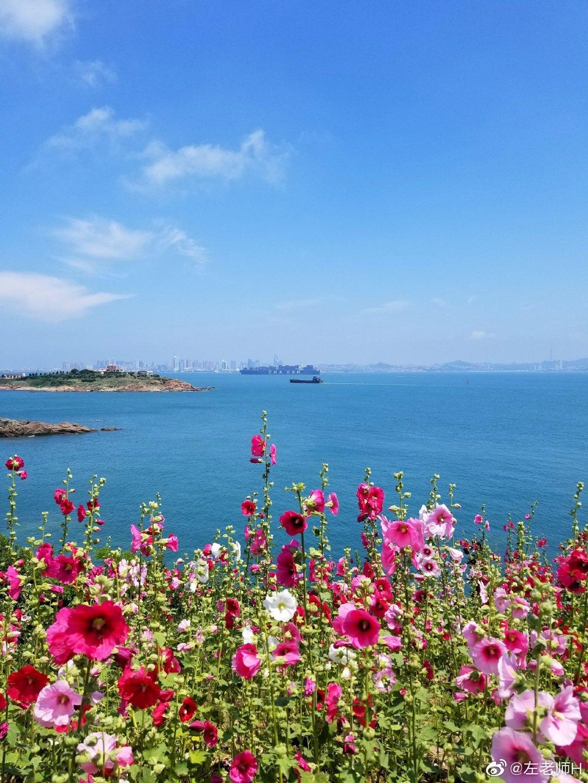 家在海边  家在青岛  @青岛市文化和旅游局 @青岛交通广播FM897