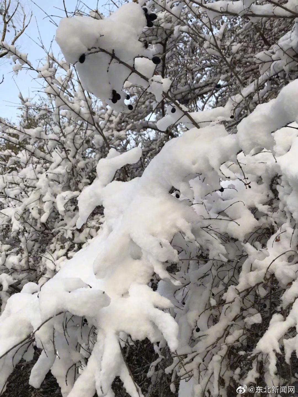 辽宁:晴冷,明后天,多地有降雪