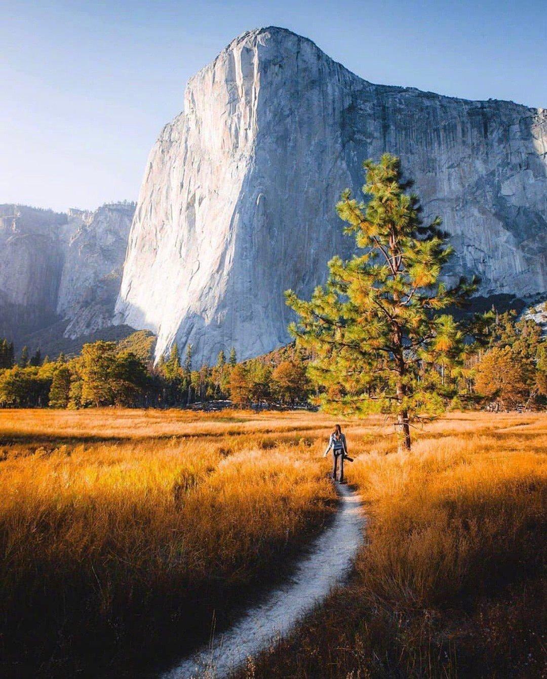 """位于美国加利福尼亚州的""""约塞米蒂国家公园""""和自己身边的公园概念不"""