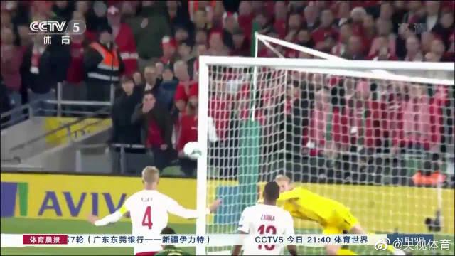 客平爱尔兰 丹麦晋级欧洲杯正赛