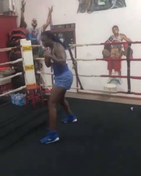 奥运冠军 现在女子中量级 WBC/WBA/IBF/WBO/RING 冠军:希尔斯