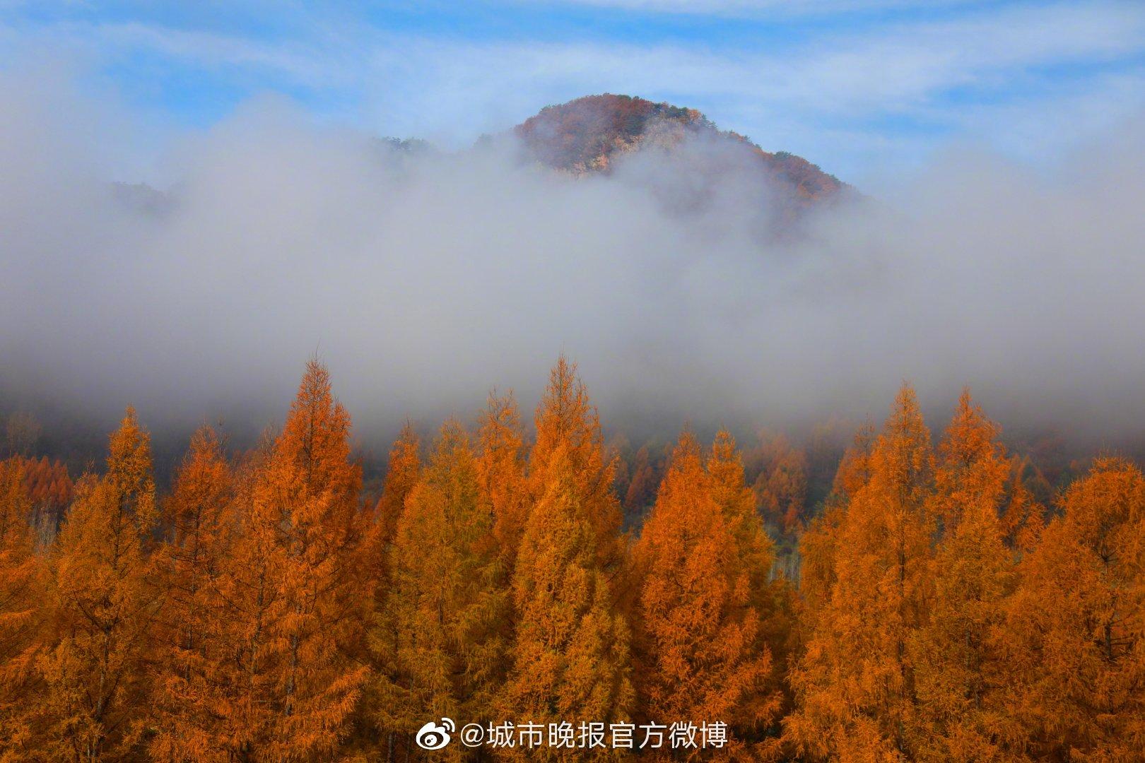 五女峰国家森林公园位于吉林省集安市北部