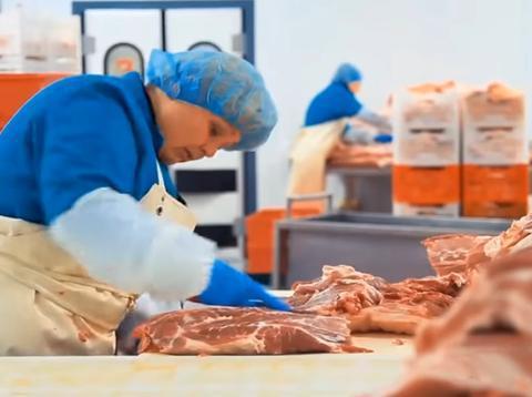 火腿肠是用死猪肉做成的吗?镜头实拍生产过程,看完你就知道了