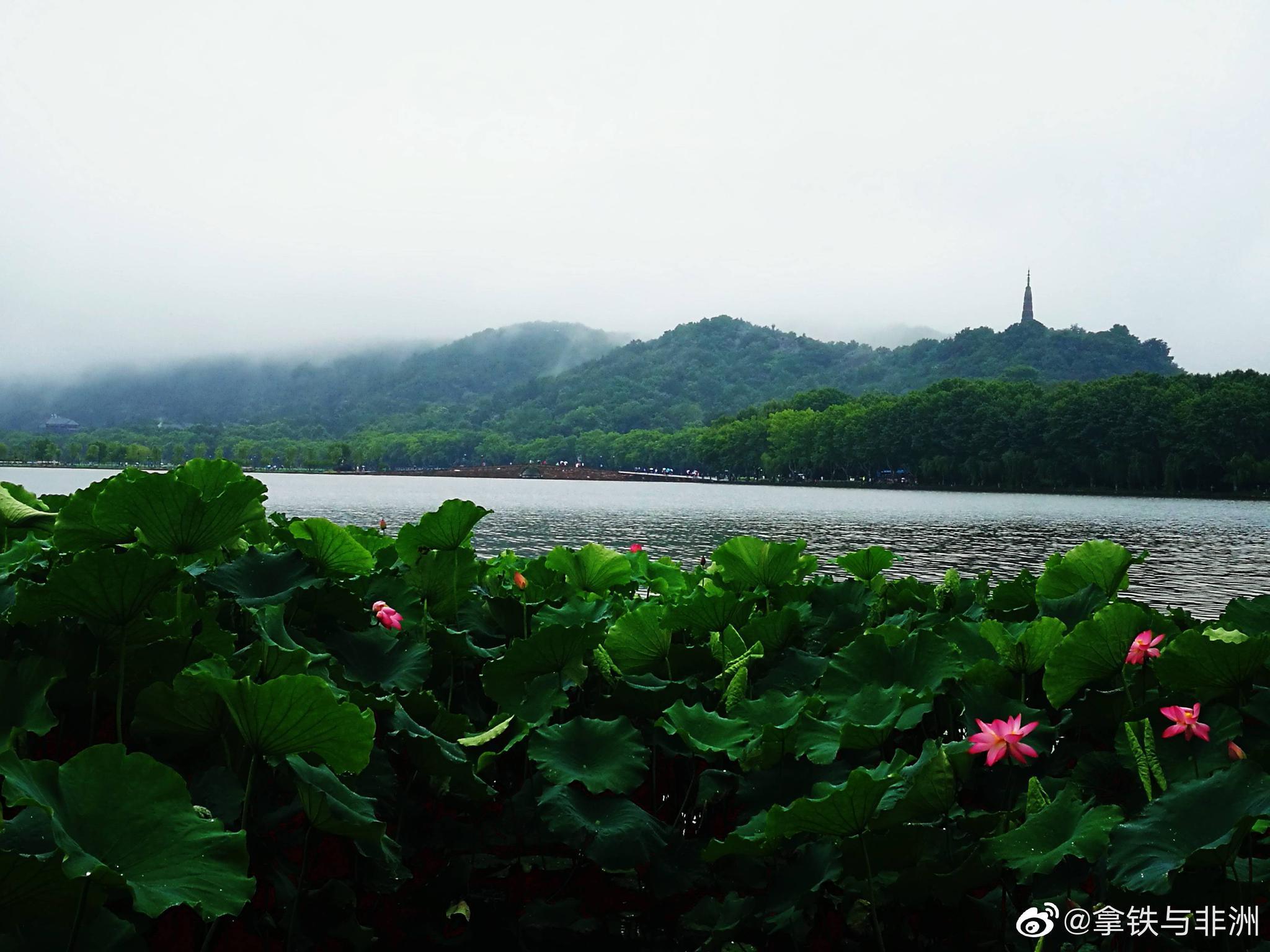 烟雨西湖,一首流淌千年的诗
