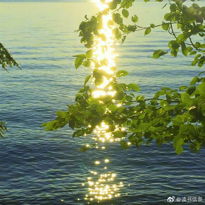 """""""若逢新雪初霁 满月当空 下面平铺着皓影 上面流转着亮银 而你带笑地"""