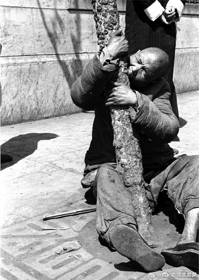 1942年,中国大饥荒,人在各种吃树皮