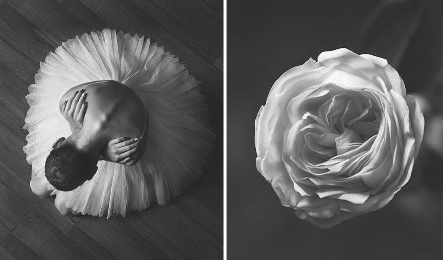 女人花果然真实存在!芭蕾女舞者与鲜花,美到极致