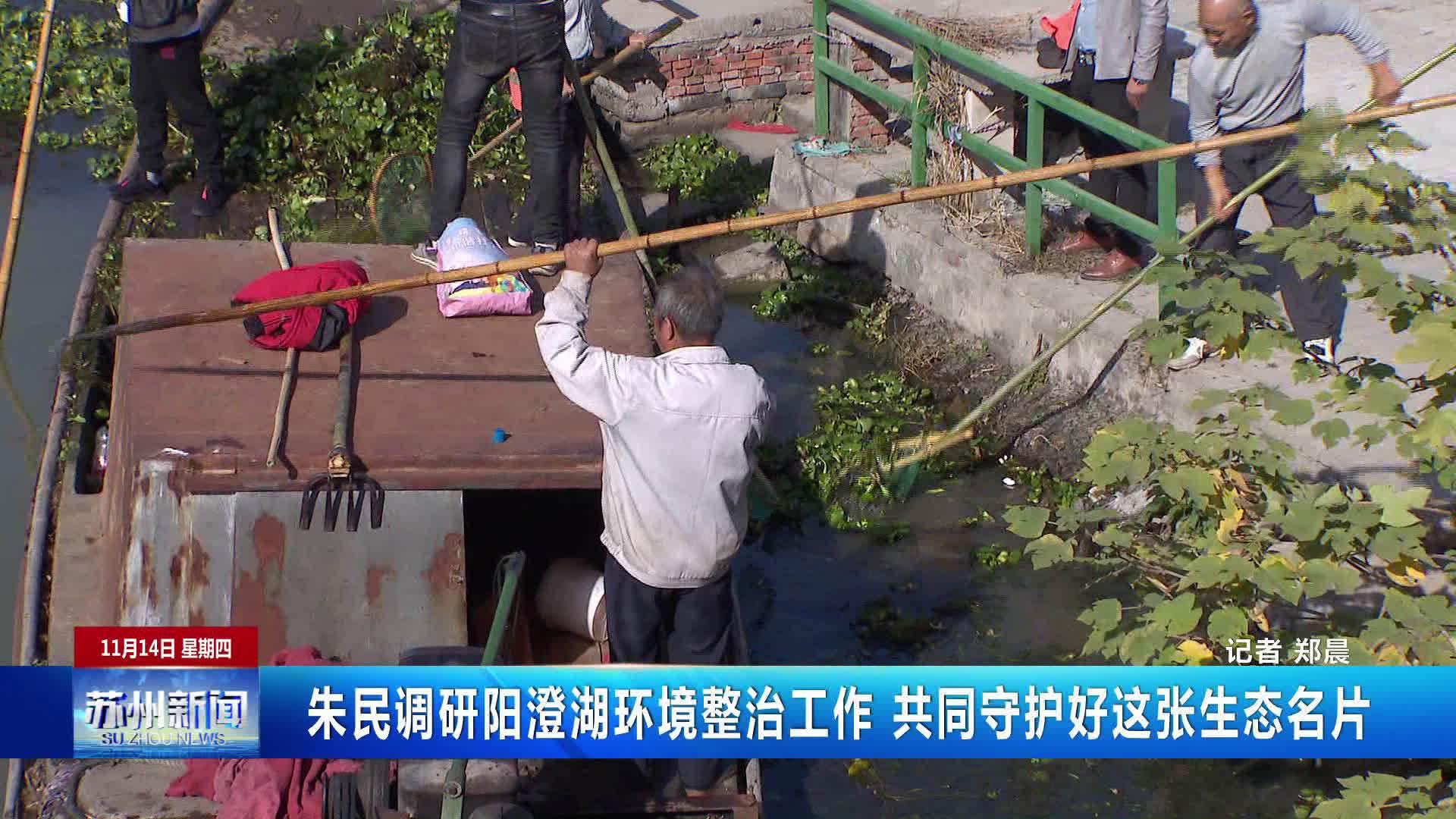 朱民调研阳澄湖环境整治工作 共同守护好这张生态名片
