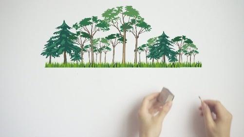自然灾害难以避免,森林防火不可忽视!消除火患,珍爱家园!