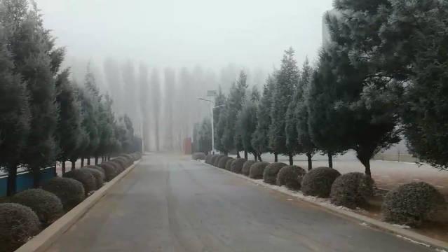 彰武此时!重度霾!(视频:陈红亮)——大雾黄色预警信号
