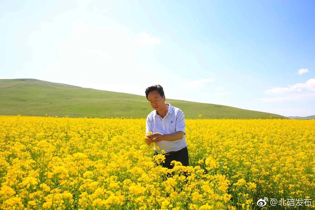 """西南大学农学与生物科技学院李加纳教授带领""""黄大年教师团队""""与中国"""