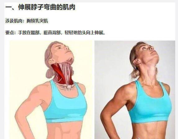 久坐不动腰酸背痛,超实用动作3D图解! 解救僵直的脖颈