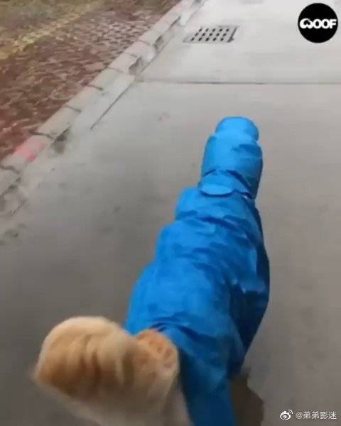这个雨衣很帅哦~