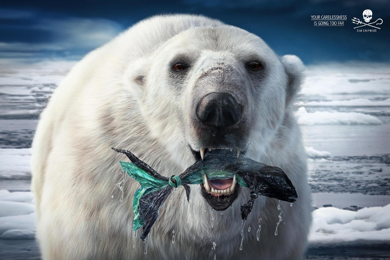 海洋守护者协会公益广告,不仅是海洋动物受到塑料垃圾的影响。