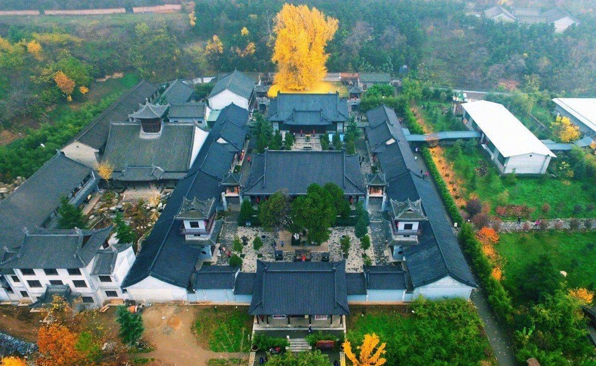 西安市古观音禅寺1400年的银杏树转发许愿暴富!