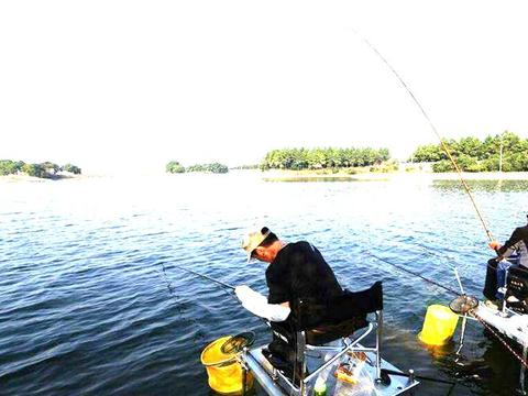 秋季钓鱼认准这2钓2不钓,钓好鱼不难,想钓好鱼的别错过