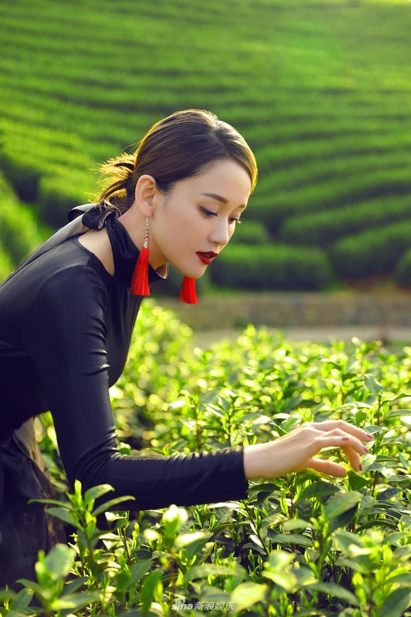 传统和潮流的结合 陈乔恩大片演绎茶文化的和谐美