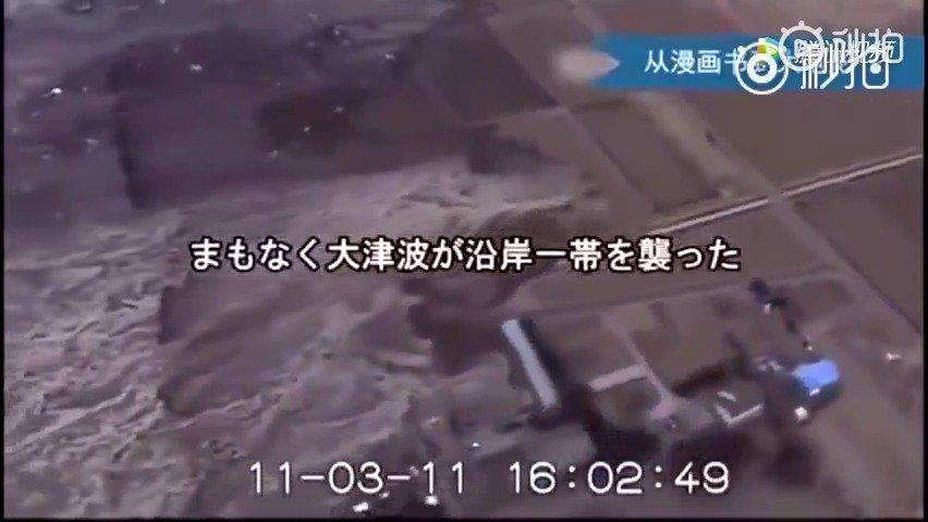 核辐射有多大影响,看看2011年日本福岛核泄露后的状况,变异