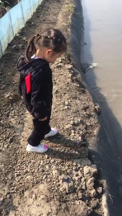 螃蟹:大家快跑,速度慢的要被踩死啦!
