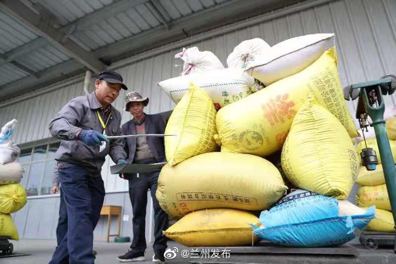 脱贫攻坚地方行|龙头企业带动经济发展 保护价格让牧民吃上定心丸