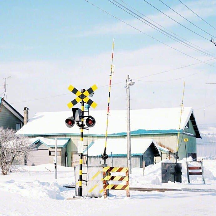 北海道小樽,电影《情书》的取景地,真的太好看了…