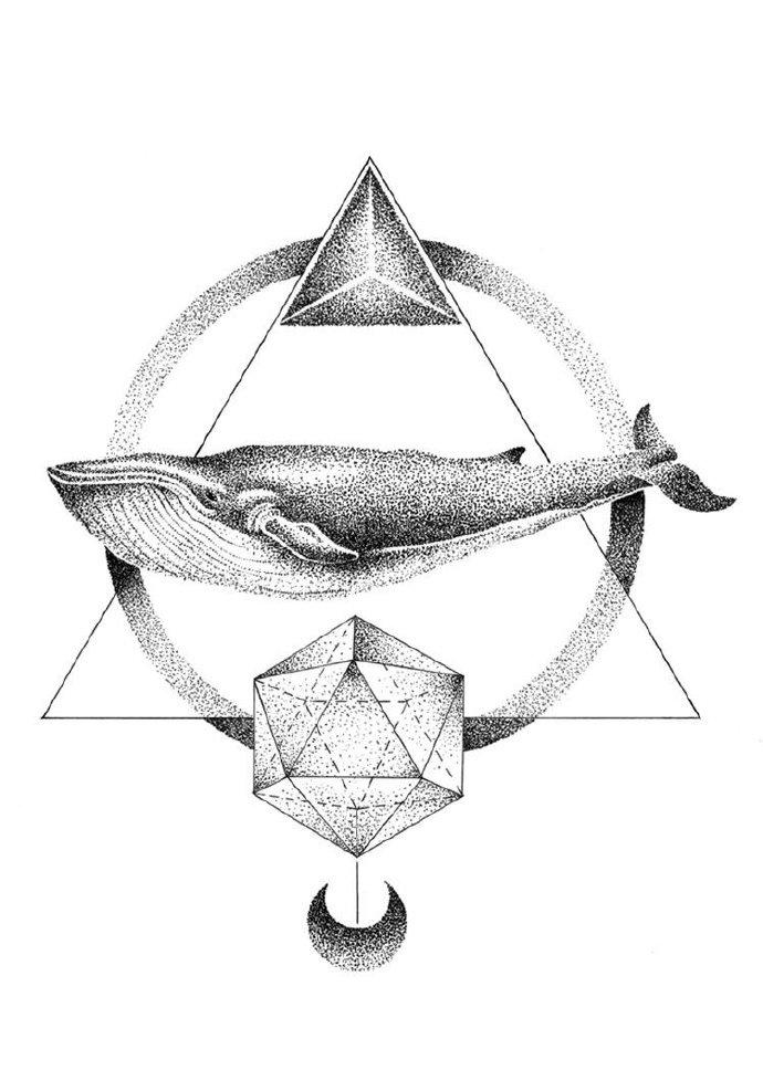 鲸鱼· 手绘