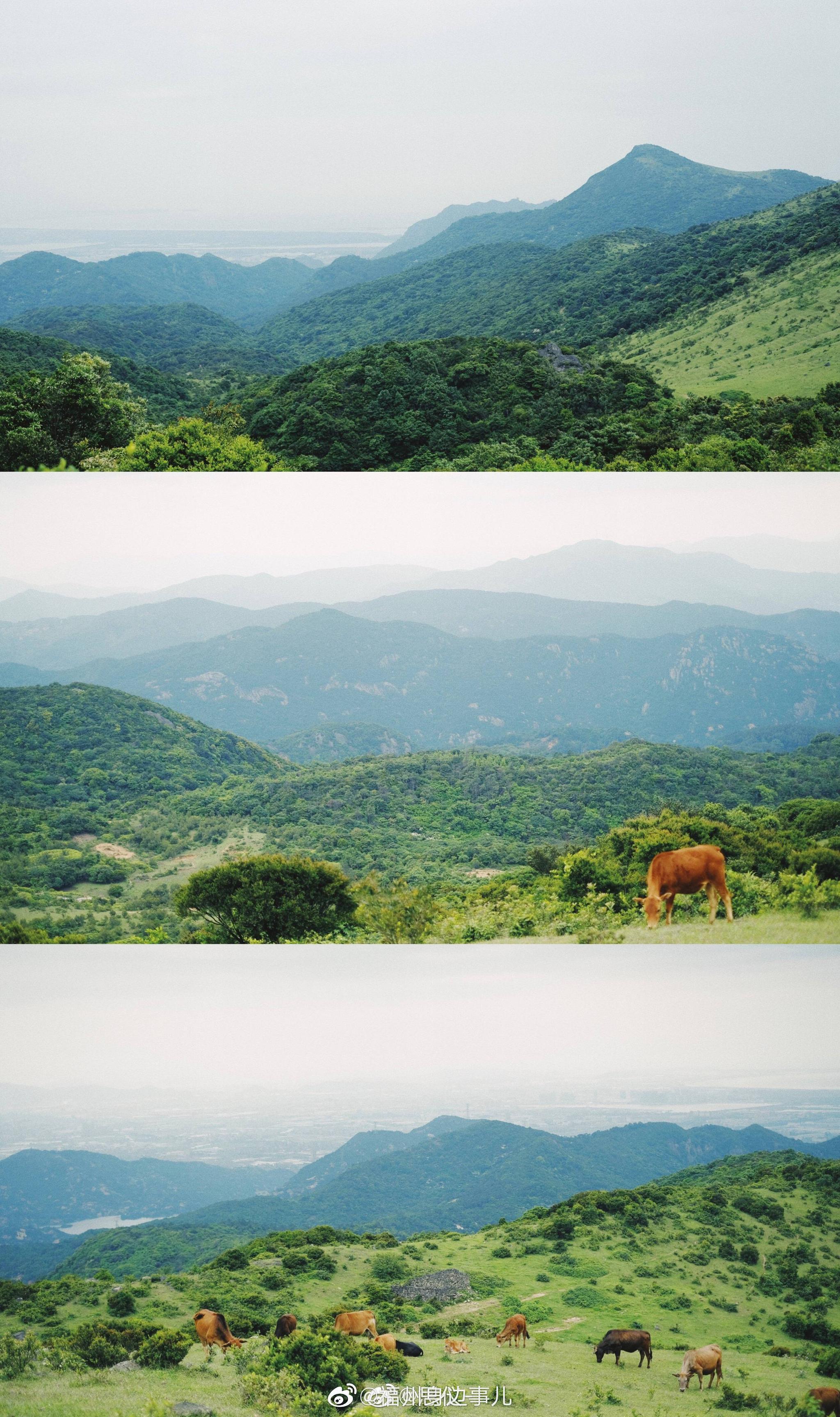 大姆山地处福建省福州福清市南岭镇,为福州辖区最大,最美的草原.