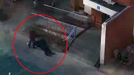 保定一居民区发生命案!行凶者逃离时被民警抓获