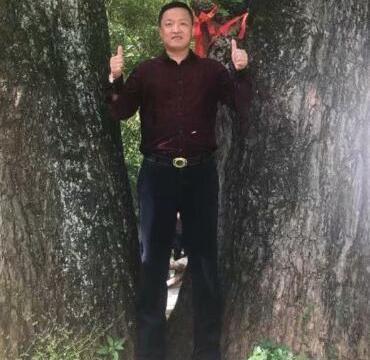 著名生态书法家李国辉首创十二生肖书法和对联获大众好评