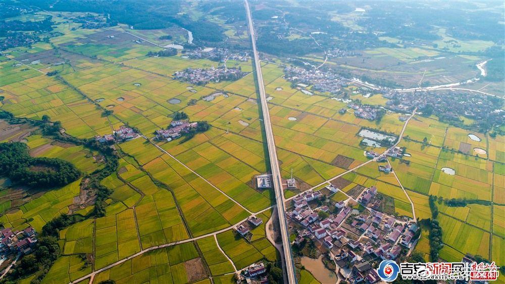10月10日,在空中俯瞰万安县窑头镇八斗村