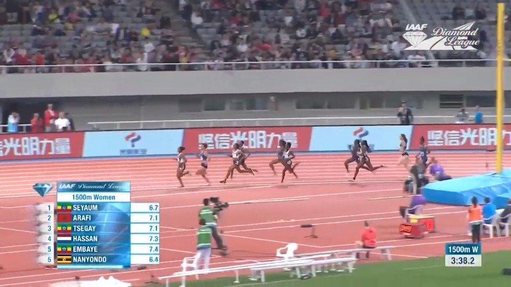 2019国际田联钻石联赛——通往终点之路系列女子1500米  我看到了哈