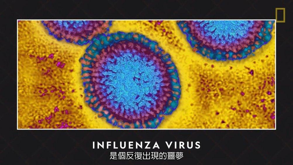 流感是种有高度传染性的呼吸道疾病,它年复一年地造成毁灭性后果