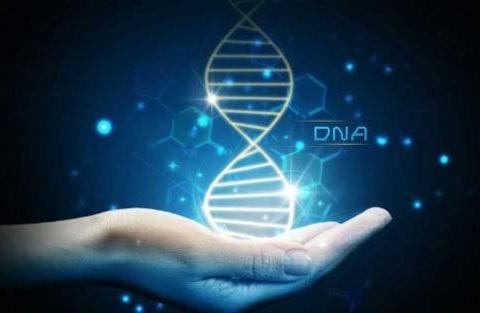 """""""5G+医疗""""——赋能遗传性出生缺陷和罕见病精准防控"""