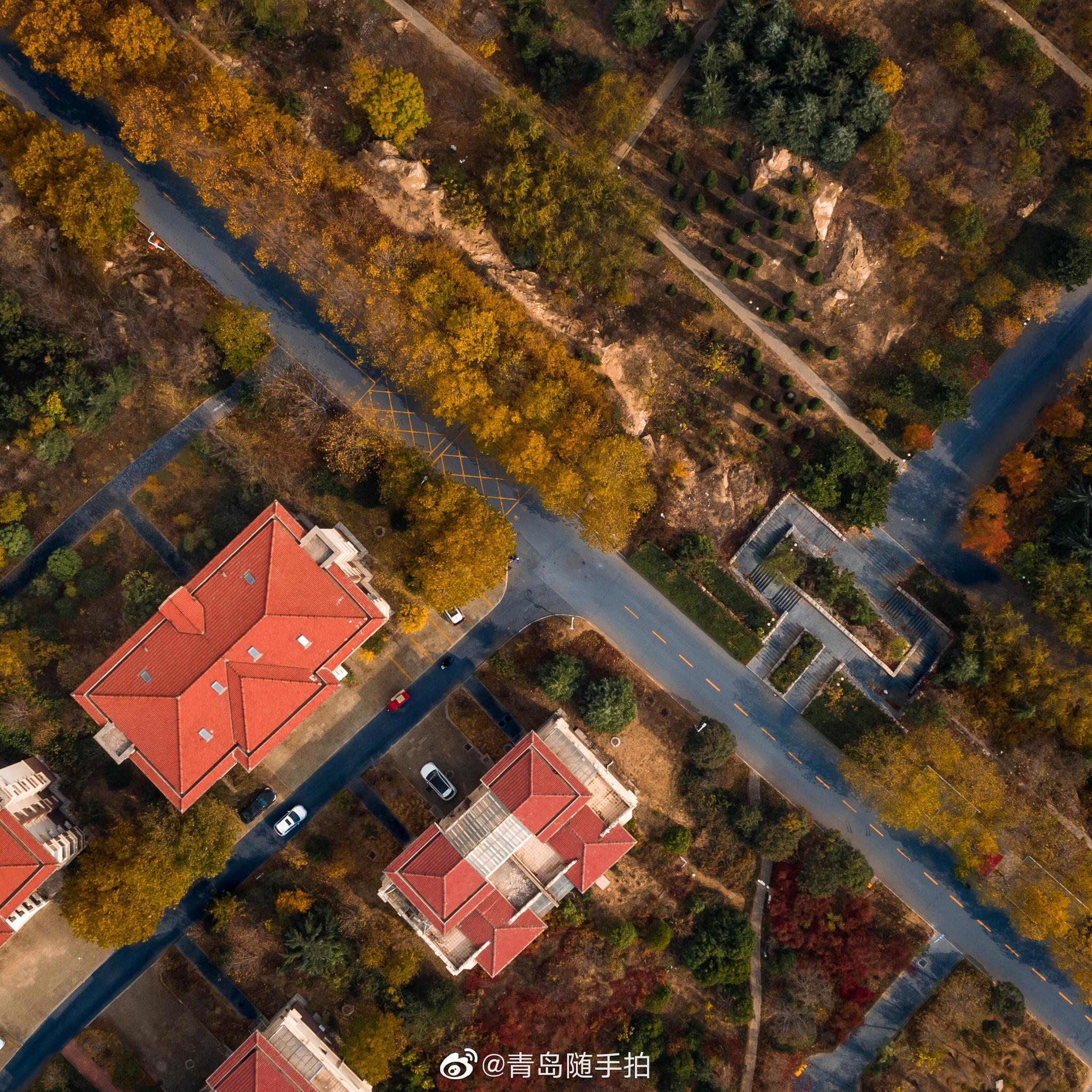 俯瞰深秋,这里是醉美大学@山东科技大学 | 青岛摄影/@K_iD_s