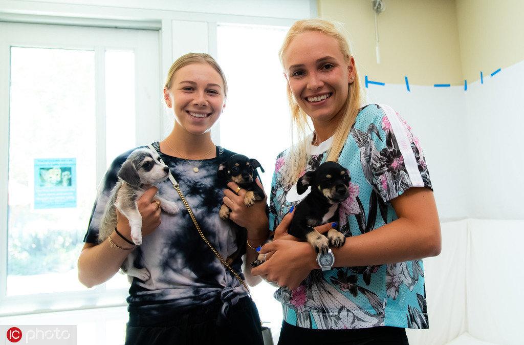 圣何塞赛前,维基奇与阿尼西莫娃造访动物保护协会,与狗狗互动自拍