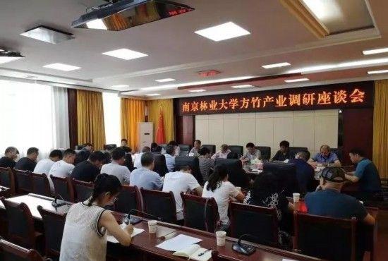 南京林业大学到桐梓县调研考察方竹产业