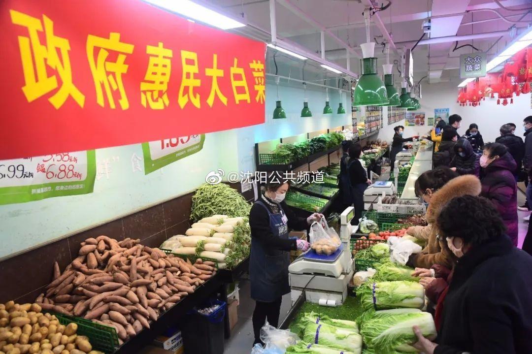 """零利润""""政府惠民大白菜""""1.65元/斤!沈城这91家门店开售"""