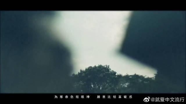 《人非草木》是吴雨霏演唱的一首歌曲,林夕作词,杨淽作曲