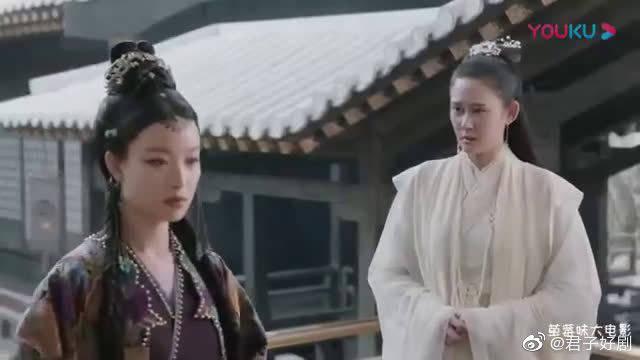 张震 倪妮