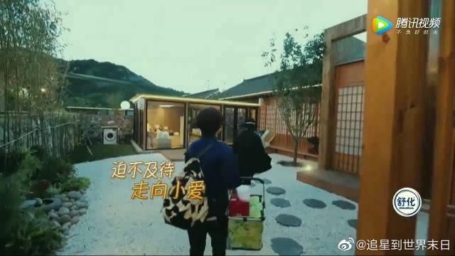 王楠探班福原爱,并教授如何对付江宏杰,并透露了平常如何整治老公