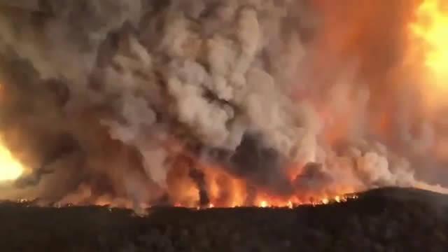 天啊,目前澳洲山火处于失控状态悉尼大学的生态学家表示