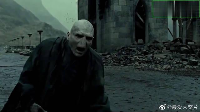 哈利波特片段,哈利波特利用老魔杖将伏地魔打败