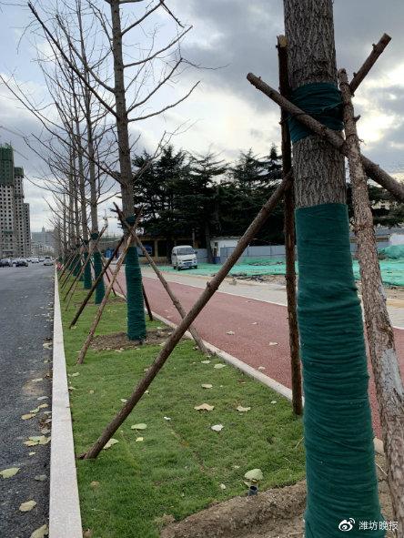 北宫东街和文化路畅通改变城市交通格局,给潍坊市民带来便利