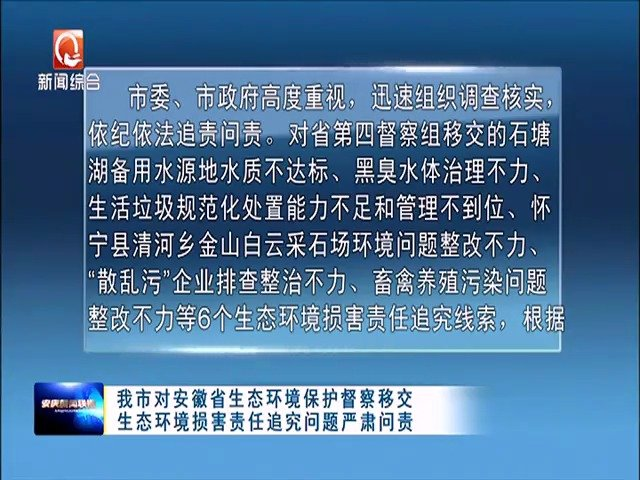 安庆市对安徽省生态环境保护督察移交生态环境损坏责任追究问题严肃问