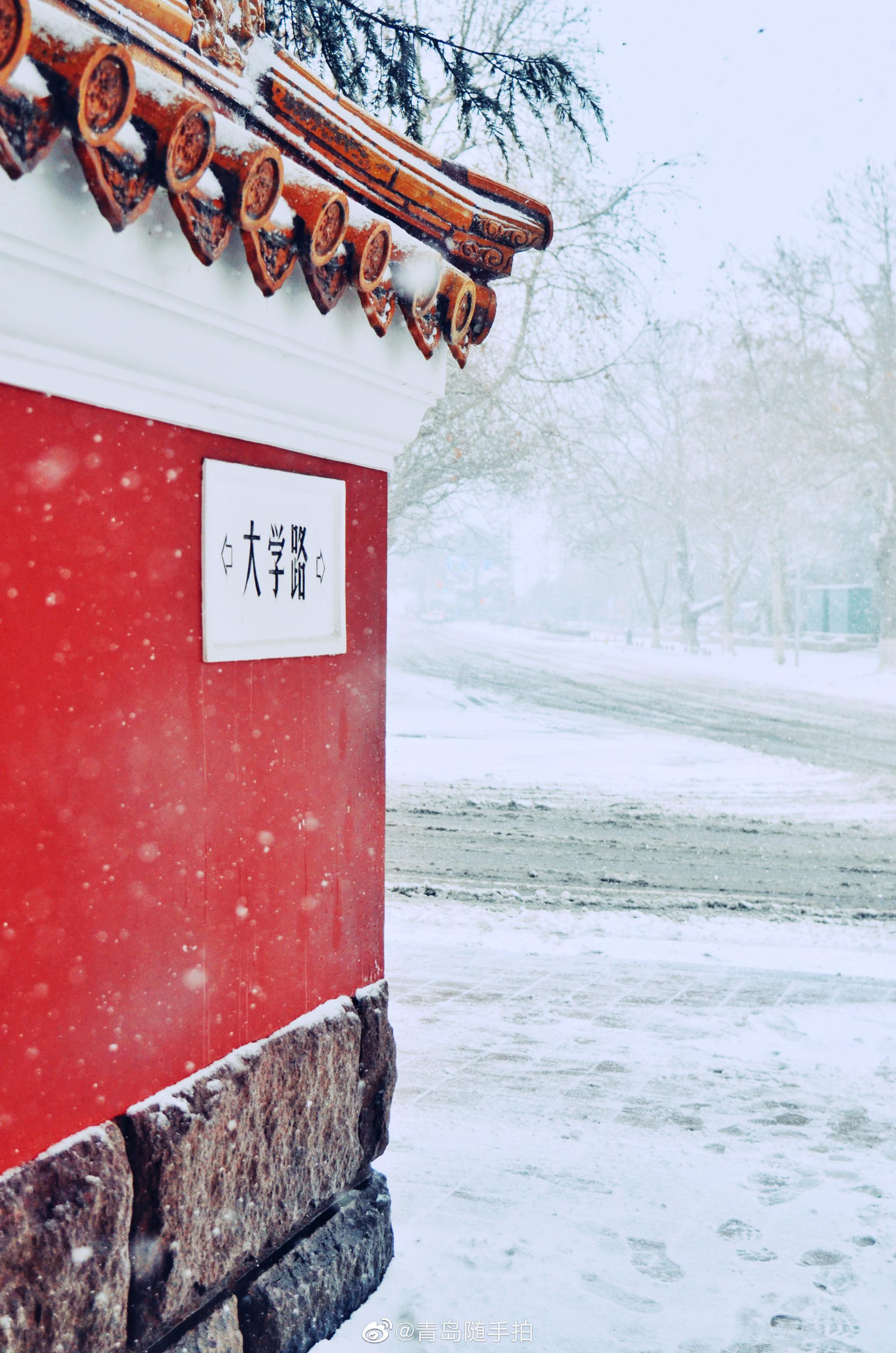 白雪映红墙银装素裹碎碎坠琼芳意境悠远来看青岛大学路&鱼山路的雪